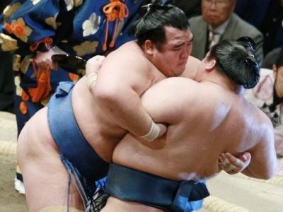 Особенности жизни сумоистов